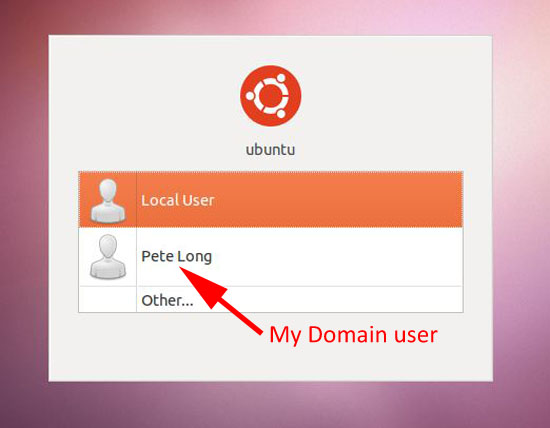 ubuntu display domain user