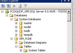 VIM_VCDB database