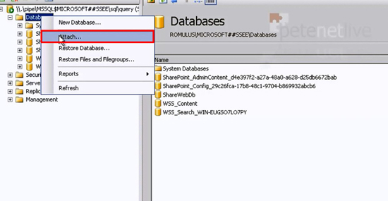 SQL Attach Database