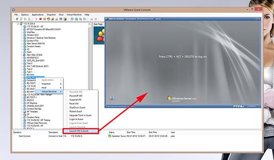 VMware Guest Console