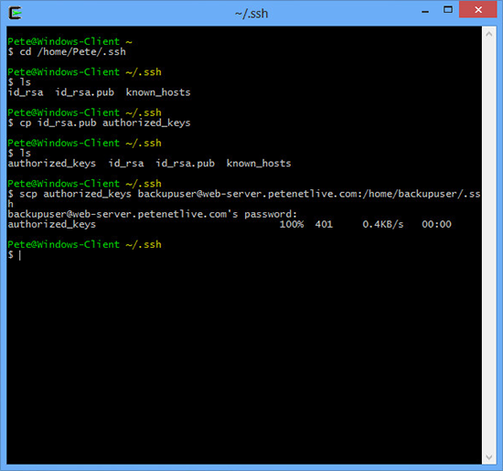 Copy from Cygwin to Linux via SCP