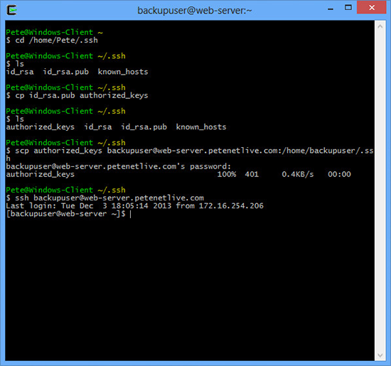 Test SSH from Cygwin