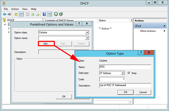 Custom DHCP Options