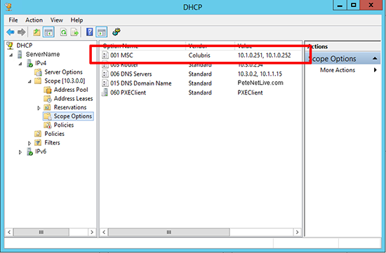 DHCP Scope Options Define Custom
