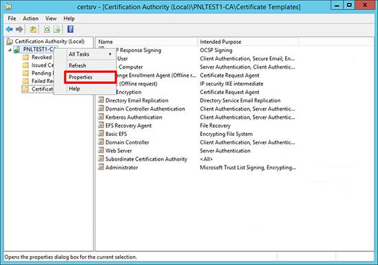 Server 2012 PKI Setup