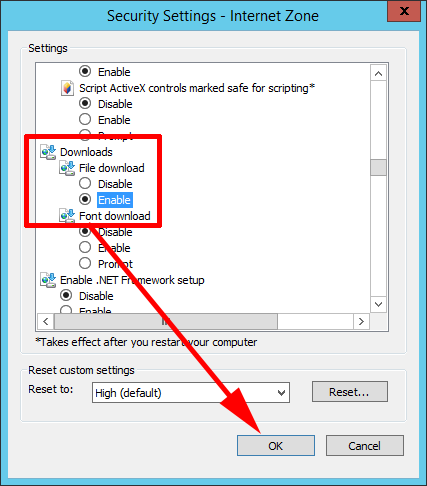 IE Enable Downloads