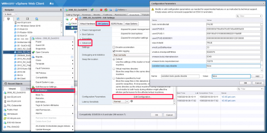 VMware 6.5 Enable Copy Paste