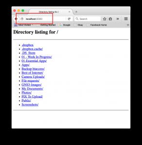 linux python web server