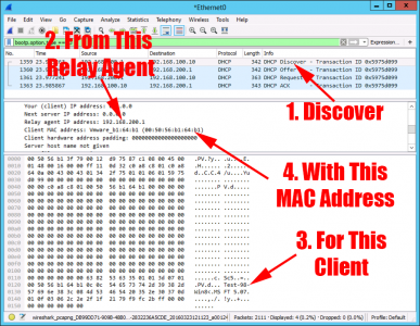 DHCP Agent Packet Sniff