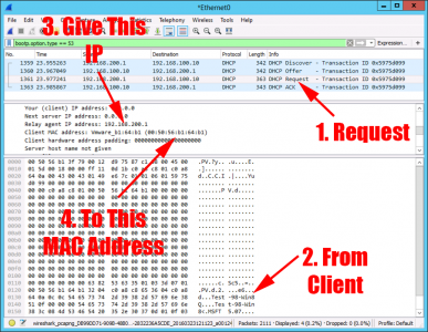 Prove DHCP relay with packet Sniffer