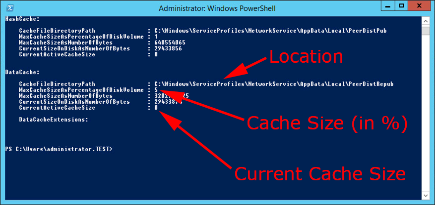 Windows BranchCache (Hosted and Distributed) | PeteNetLive