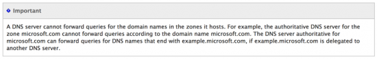 DNS server cannot forward for its one domain