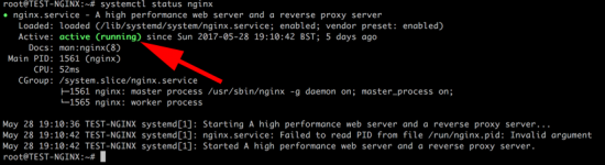 Check nginx is running