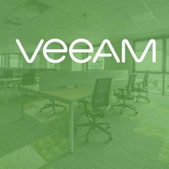 Veeam Virtual Labs & SureBackup