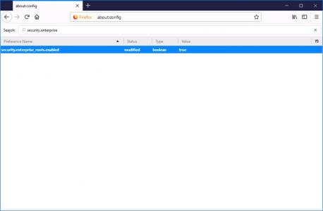 vCenter web in Firefox