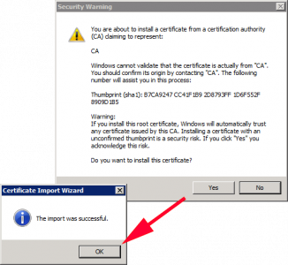 Successful Import vCenter Root CA Certificate
