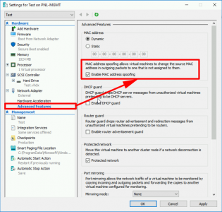 Hyper-V Enable MAC Spoofing