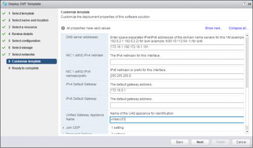Deploy VMware UAG OVA DNS Setup