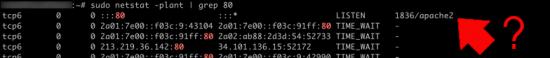 Ubuntu whats listening on port 80