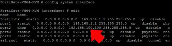Fortigate Show IP CLI