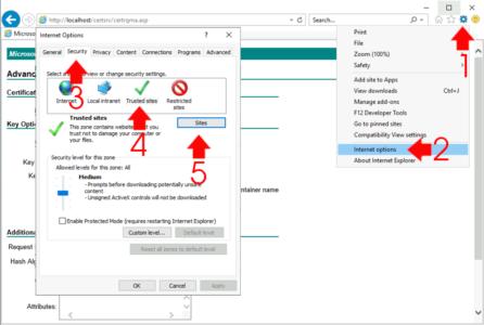 Internet Explorer Security Settings