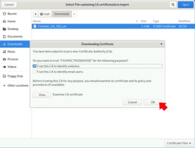 Firefox Import CA Certificates