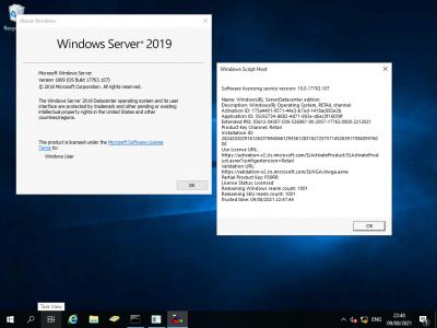 Upgraded to Windows 2019