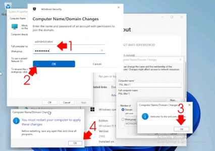 Domain Join Windows 11